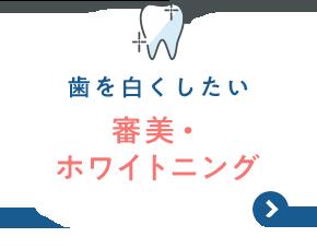 歯を白くしたい 審美・ホワイトニング